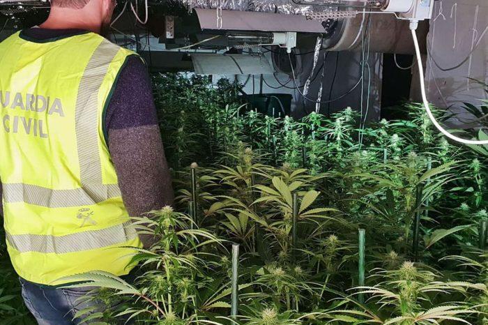 Aumento en fraudes eléctricos durante la pandemia reveló crecimiento de cultivos de cannabis en España